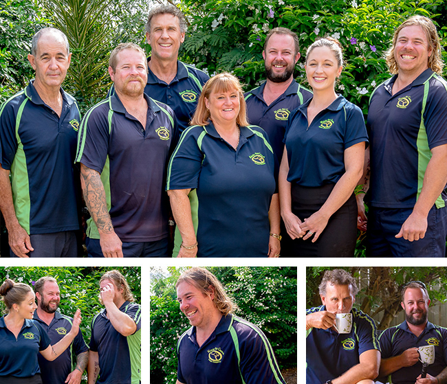 wallaby team